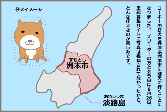コーギーアルんち:コーギーの仔犬とは淡路島で会う