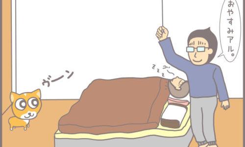 コーギーアルんち:ほな寝るよアル