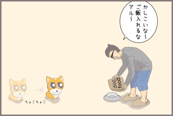 コーギーアルんち:ご飯を入れようとすると歩き始めるアル